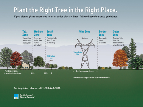 To view a video explaining PG&E's vegetation management practices, please click here: http://www.pge.com/trees (Graphic: Business Wire)