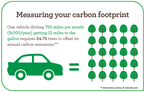 Measuring your carbon footprint (Graphic: Business Wire)