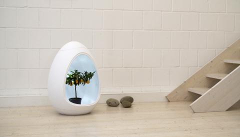 DasEgg ist ein vollautomatisches Indoor-Gew&aumlchshaus, das in dieser Form bisher einzigartig ist. (Pho ...