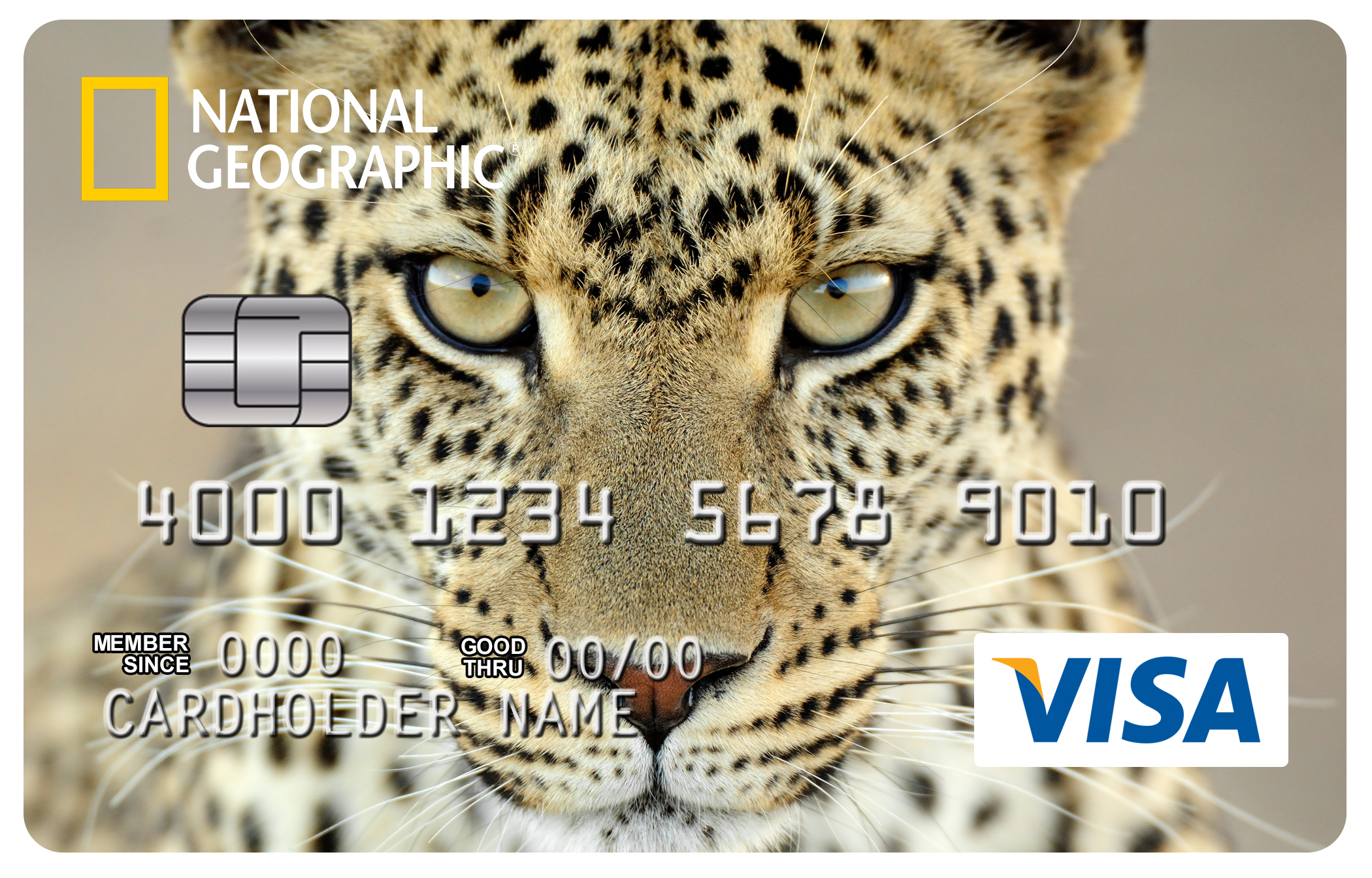 National Geographic and First Bankcard Launch New Visa® Card with ...