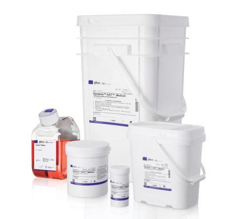 The new Gibco Dynamis Medium for Cell Culture Fed-Batch Processes is fortified to help maximize recombinant CHO cell growth and protein expression, providing customers with significantly greater yields than existing formulas. (Photo: Business Wire)