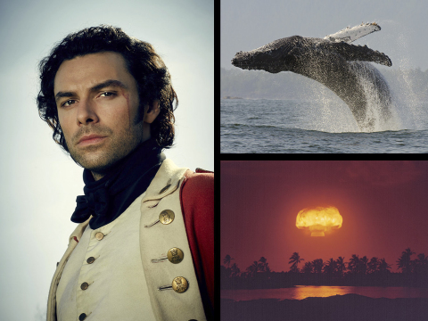 Left: Aidan Turner as Ross Poldark. Credit: Courtesy of Robert Viglasky/Mammoth Screen for MASTERPIECE. Top Right: Humpback whale (Megaptera novaeangliae) adult breaching. Credit: Bertie Gregory. Bottom Right: Atomic Test. Courtesy of Ken Hackman.