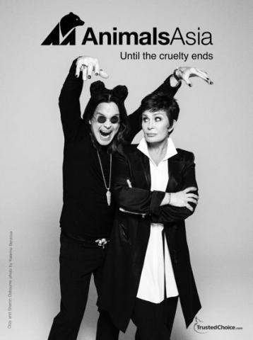 Ozzy and Sharon Osbourne support Animals Asia campaign. (Graphic: Katarina Benzova/Animals Asia)