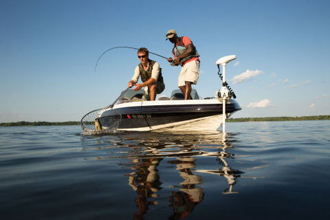 Outboard boats (pontoons, fishing boats and small family cruisers) were the most popular type of new ...