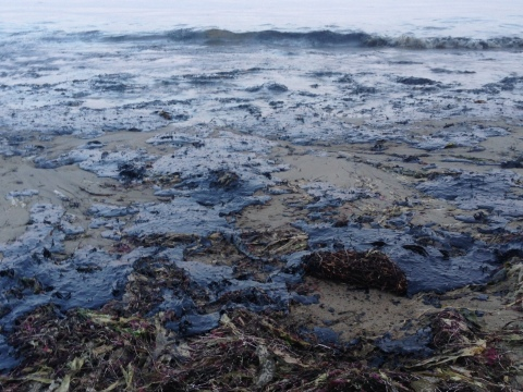 Keller Rohrback Files Class Action Lawsuit on Behalf of Fishers, Businesses and Individuals Affected by the Refugio Oil Spill in Santa Barbara (Photo: Business Wire)