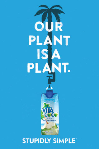 """Vita Coco coconut water's latest ad campaign: Stupidly Simple. """"Our plant is a plant"""" ads can be found in major cities through the summer months. (Graphic: Business Wire)"""