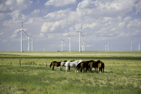 Iberdrola Renewables' Twin Buttes Wind Power Project in Lamar, Colorado (Photo: Business Wire)