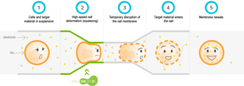 SQZ Biotech's CellSqueeze Technology (Graphic: Business Wire).