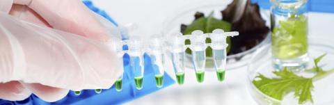 Evoqua will supply the U.S. Food & Drug Administration's (FDA) Arkansas Regional Laboratory in Jeffe ...