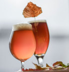 CraftBeer.com fall seasonals 2015 (Photo: Business Wire)
