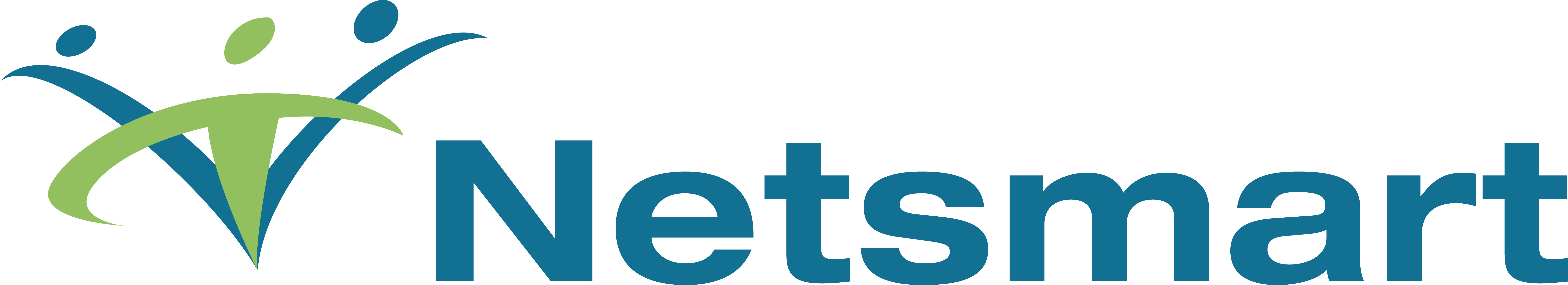 Valued Care Consulting Services Netsmart Logo Jpeg