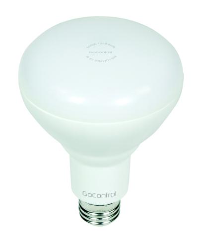 GoControl Bulbz Floodlight (Photo: Business Wire)