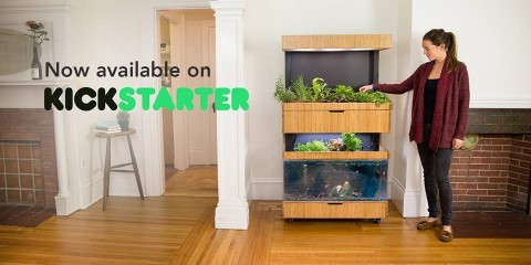 The Grove Ecosystem, now available for purchase on Kickstarter, is an intelligent, indoor garden that is set to change the way Americans think about and grow their own food. (Photo: Business Wire)