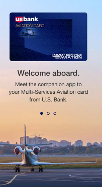 U.S. Bank Multi Service Aviation MSA Pay Welcome Page (Graphic: U.S. Bank Multi Service Aviation)