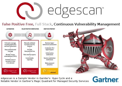 Continuous Vulnerability Management (Graphic: Business Wire)