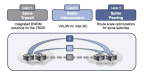 Three Options for Spine Internetworking (Graphic: Business Wire)