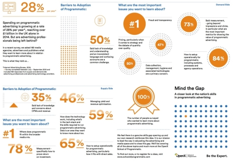 OpenX's School of Programmatic Survey Findings (Graphic: Business Wire)