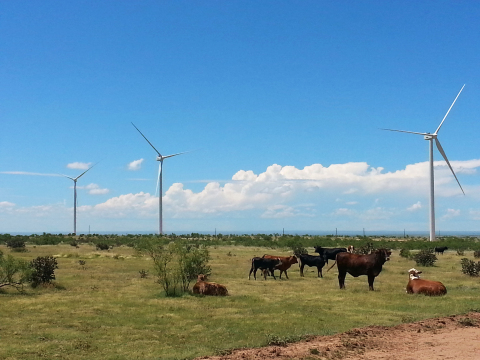 Spinning Spur 3 Wind Project in Texas. (Photo: Business Wire)