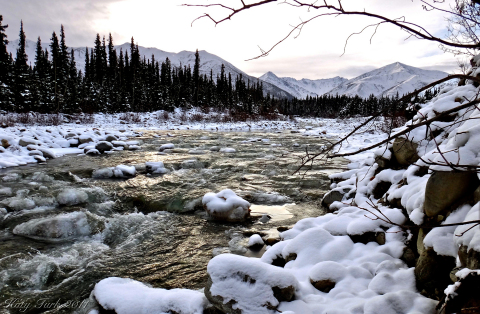 Winter envelops Yerrick Creek near Tanacross, Alaska. (Photo: Business Wire)