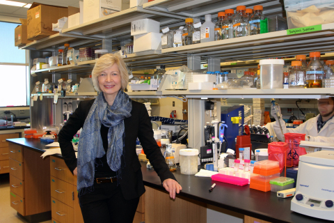 Dr. Ruth Ruprecht, Scientist and Director of the AIDS Research Program at Texas Biomedical Research Institute (Photo: Business Wire)
