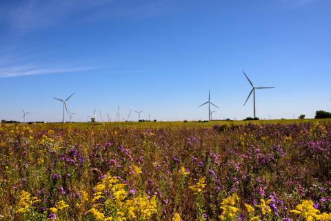 Wind Project. (Photo: Business Wire)