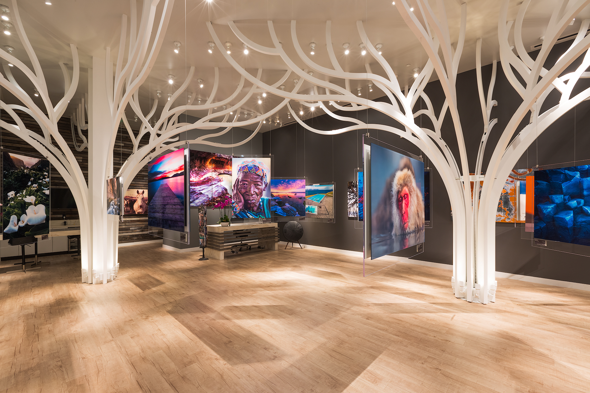 Soraau0027s LED Lighting Perfectly Illuminates the Innovative Andrei Duman Gallery | Business Wire & Soraau0027s LED Lighting Perfectly Illuminates the Innovative Andrei ... azcodes.com