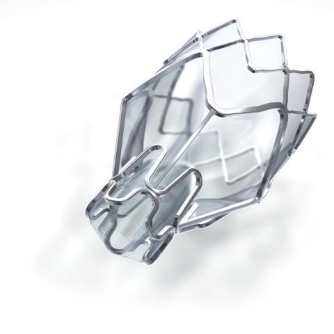 Zephyr® Endobronchial Valve (Photo: Business Wire)