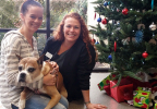 Pet owner Laura Leal and her beloved Boxer Addy, join Kelli Sloane, radiation therapist, after successful treatment of Addy's brain tumor with stereotactic radiosurgery (SRS) at PetCure Oncology at Care Center in Cincinnati. (Photo: Business Wire)