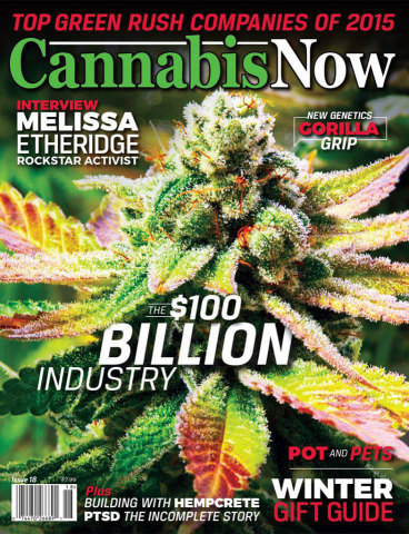 The December issue of Cannabis Now, now available on newsstands in airports across North America starting this week. (Photo: Business Wire)