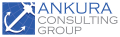 Ankura Consulting Group
