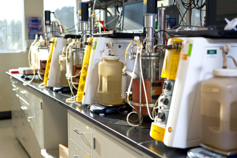 Researchers at REG Life Sciences in South San Francisco, CA are working with ExxonMobil to develop biodiesel from cellulosic sugars using REG proprietary technology. (Photo: REG)