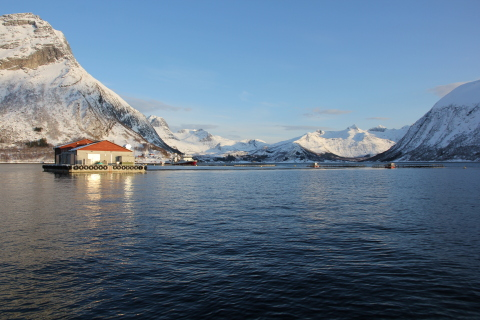 Kvaroy fish farm in Norway where In the Blue feed was used to create the first ever farmed salmon with a fish-in, fish-out ratio below 1-to-1. The feed is also the first to remove environmental contaminants, creating a cleaner finished salmon that ends up on dinner plates. (Photo: Business Wire)