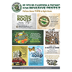 Protect Gardens From Invasive Hungry Pests with USDA's Six, Easy-to-Follow Tips (Graphic: USDA-APHIS)