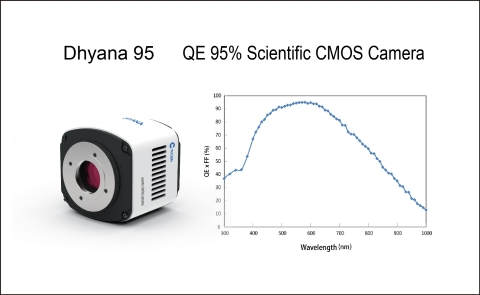 Dhyana 95 - QE 95% Scientific CMOS Camera (Graphic: Business Wire)