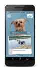 askPETMD provides the most comprehensive collection of content for all things pet care and pet lifestyle. From dogs and cats to specialty pets like fish, reptiles, birds, hamsters and guinea pigs, among others, askPETMD puts all the answers to pet questions in one place - your mobile device. (Photo: Business Wire)