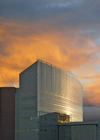 Medical University of South Carolina Health (Photo: Business Wire)