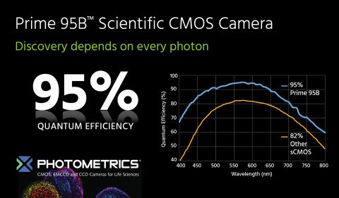 Photometrics Prime 95B Leverages Backside Illuminated Sensor Technology Providing Three Times More Sensitivity than Previous Scientific CMOS Cameras. (Graphic: Business Wire)