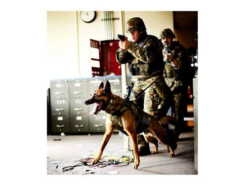 Sonobond's ultrasonic equipment produces watertight enclosures for the ballistic components contained in K9 Storm Patrol-Swat vests for working dogs. The vests now exceed National Institute of Justice wet-conditioning standards, preventing the bulletproof material inside from becoming damaged or ineffective due to exposure to moisture, and ensuring that dogs have the personal protection comparable to that worn by their human handlers. (Photo: Business Wire)