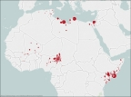 Militant Islamist Group Attacks in 2015, as recorded by IHS JTIC (Graphic: Business Wire)