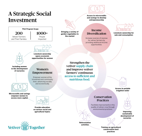 Vetiver Together (Graphic: Business Wire)