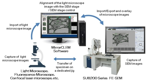 Overview of the MirrorCLEM System (Graphic: Business Wire)