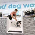 Petsmart opens the first petsmart pet spa store an innovative petsmart opens the first petsmart pet spa store an innovative retail concept focusing on the pet lifestyle experience business wire solutioingenieria Choice Image