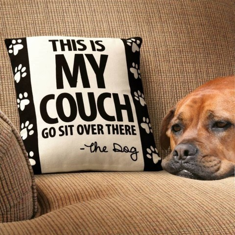"""This is My Couch"" Throw Pillow - Your dog may know how to stake a claim, but when did writing notes become a skill? This cushy, funny pillow has a removable 100% cotton cover. (Photo: Business Wire)"