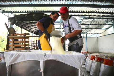 Dairy workers at a Colombian dairy that operates without refrigeration. (Photo: Business Wire)