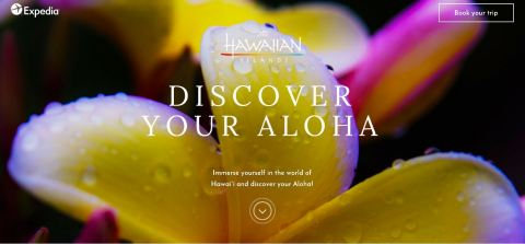 """""""Discover Your Aloha"""" Campaign Measures Facial Responses to Drone-Captured Video Footage and Inspire ..."""
