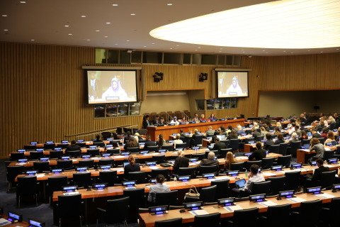 During the announcement of NAMA Fund, on the sidelines of the 71st UN General Assembly (Photo: NAMA)