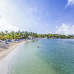 "DEERFIELD BEACH, Fla.--(BUSINESS WIRE)--<a href=""https://twitter.com/hashtag/EliteIsland?src=hash"" target=""_blank"">#EliteIsland</a>--Travel Weekly honors St. James's Club Morgan Bay, The Club, Barbados Resort & Spa, The Verandah Resort & Spa and St. James's Club Villas with Gold and Silver Awards"
