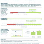 Sample TeloYears Test Report (Graphic: Business Wire)