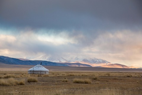 TCS World Travel Destination, Mongolia (Photo: Business Wire)