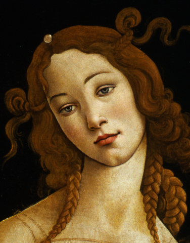 Sandro Botticelli and workshop Venus (detail) Oil on canvas, transferred from wood panel Credit: Galleria Sabauda, Turin